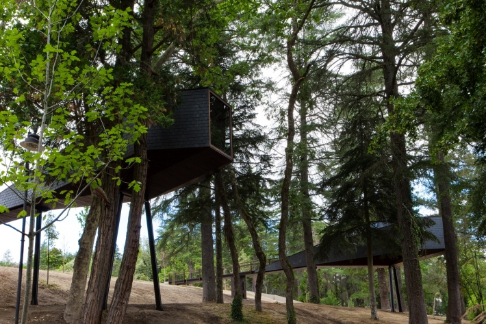 Tree Houses Pedras Salgadas Eco Park