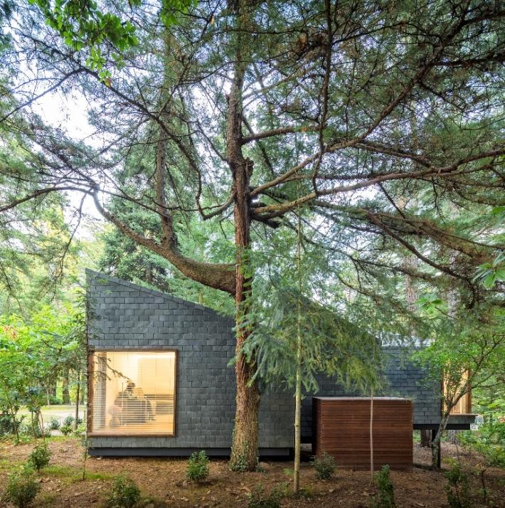 Eco Houses Pedras Salgadas Park
